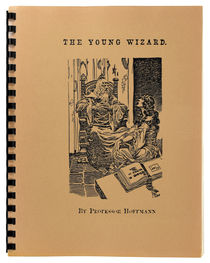 The Young Wizard