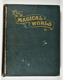 The Magical World