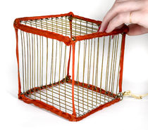 Vanishing Bird Cage
