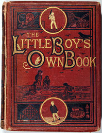 The Little Boy's Own Book