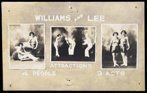 Williams and Lee Attractions Postcard